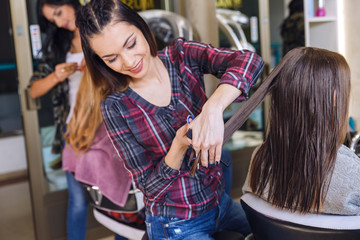 Working day inside the hair salon, hairdresser makes hair cut on young woman.