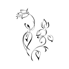 ornament 147. stylized flower with leaves in black lines on a white background