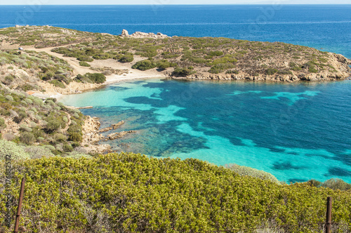 Papiers peints Tropical plage Beautiful nature of Asinara Island