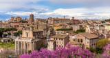 Rome - 176886540