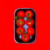 Fresh tomatoes on red. Minimal color style