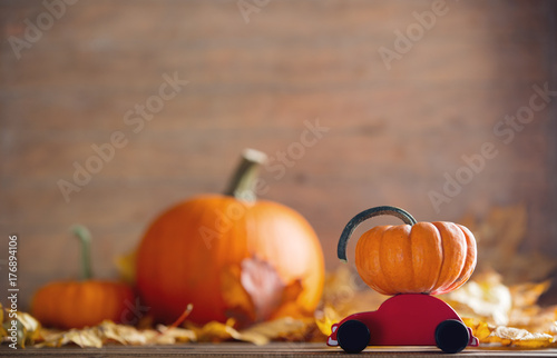 maple leaves and pumpkins with little cart toy Poster