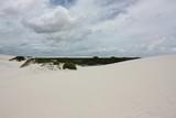 Oasis, Parc national des Lençois (dunes) du Maranhao, Brésil - 176897105