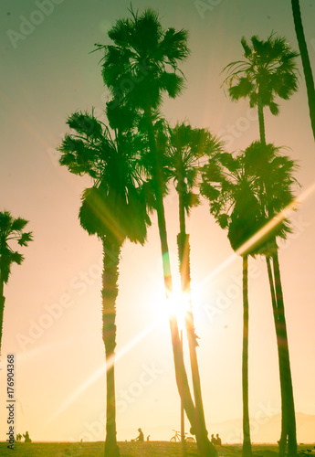 Sunny sunset on Venice Beach. Los Angeles landmark, California