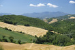 Summer landscape in Marches near Urbino