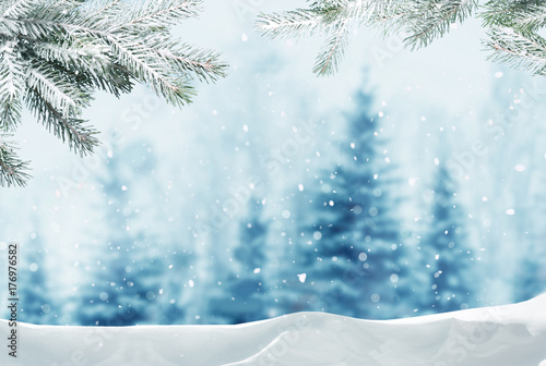 Wall mural Merry christmas and happy new year greeting background with copy-space.Winter landscape with snow and christmas trees