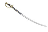 French general sabre from the time of the first French empire. - 176976731