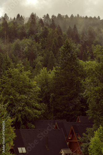 Wooden log cabins roofs in forest Poster
