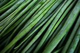 Зелёный лук перо. - 176990195