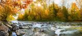 Idylle Panorama im Wald im Herbst am Wasser - Farbe im Wald am Fluss - 176997198