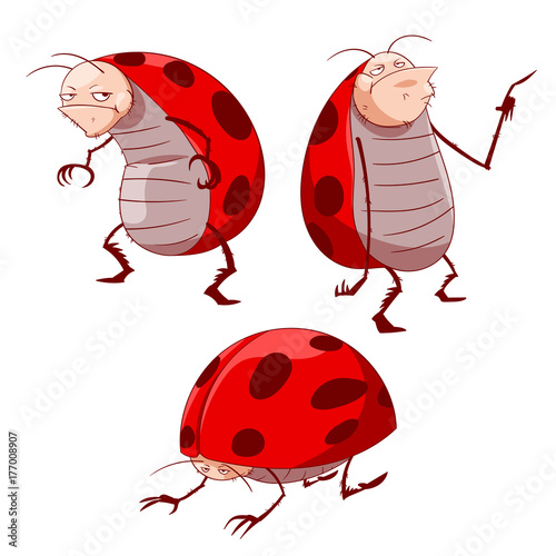 Colorful vector illustration of cartoon grumpy ladybugs