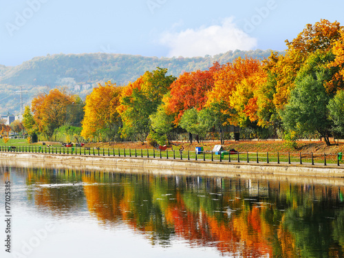 Tree line in autumn colors along the river reflected in the water © whiteaster