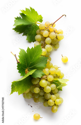 wine list background; sweet white grapes and leaf - 177027168