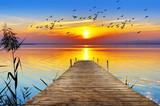 embarcadero bajo el sol del atardecer - 177027383