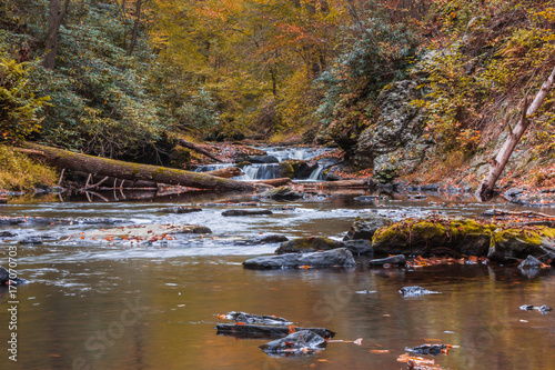 River surrounded by peak fall foliage - 177070703