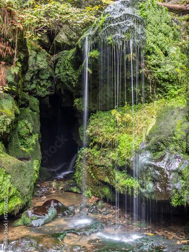 Amselfall - Elbsandsteingebirge - 177080585