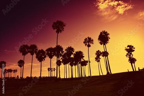 Poster Oranje eclat Sunset at Venice Beach, California, USA.