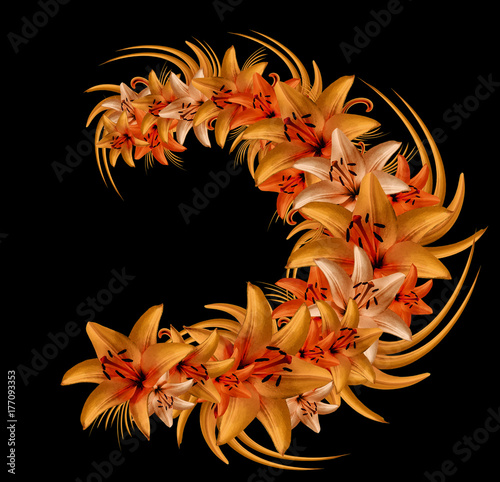 Composition  of red-orange flowers lilies on the black isolate  background Poster