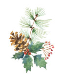 Watercolor vector Christmas bouquet with pine cone, fir branches and leaves. - 177093916