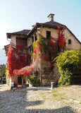 66/5000 facade of an old mansion covered with red autumn leaves - 177130532
