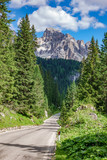 Straight mountain road in Dolomites with tree forest and peaks - 177179706