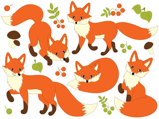 Vector Set of Cute Cartoon Foxes
