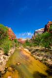 The Virgin River in Zion National Park, Utah - 177206145