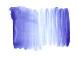 Navy Peony blue background - 177229182