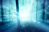 Magic blue foggy forest with ray of light bokeh background. Color filter effect used.