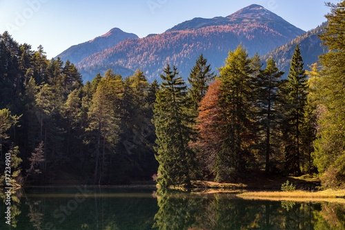 Fotobehang Betoverde Bos Amazing landscape with a sea near to wood in front of mountains in autumn