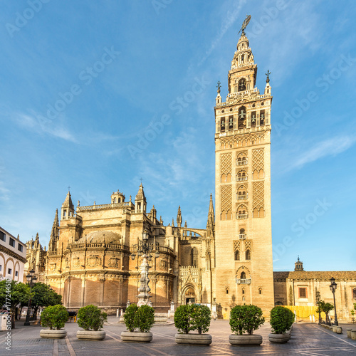 View at the Cathedral of Sevilla wirh Giralda - Spain