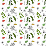 Seamless pattern with dandelion flowers and seed, meadow wild weeds and autumn colorful leaves.