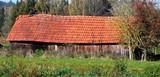 Alte Scheune mit zerstörtem Dach und mit Moose und Flechten bewachsene Dachziegel - 177287981