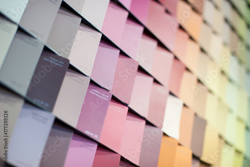 Designer Professional Palette catalog of colors for choosing the desired shade