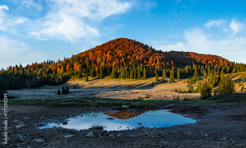 Papiers peints Piscine mountain with autumn forest reflecting in a puddle. lovely morning landscape