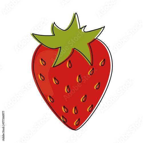 strawberry fruit icon image vector illustration design