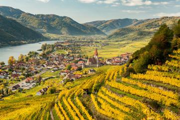 Weissenkirchen Wachau Austria in autumn colored leaves and vineyards
