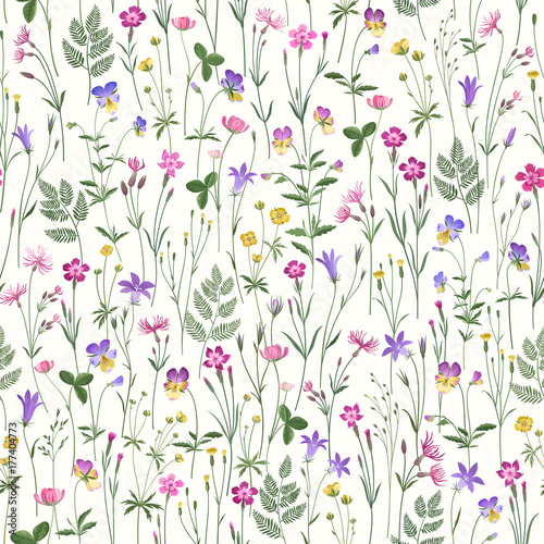 decorative seamless floral pattern with meadow flowers - 177404773