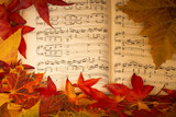 autumn leaves on the musical notes - 177407538
