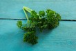 Fresh coriander leaves on wooden table