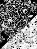 Stampa floreale in bianco e nero minimal  - 177443778