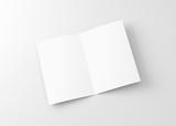 White Blank Bifold Paper Brochure - 177459998