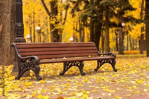 Aluminium Herfst Empty bench in park
