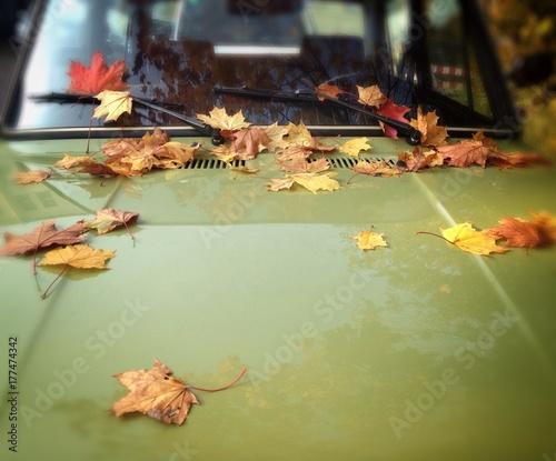autumn leaves on retro car