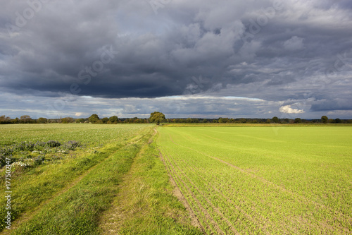 Fotobehang Donkergrijs storm clouds in yorkshire