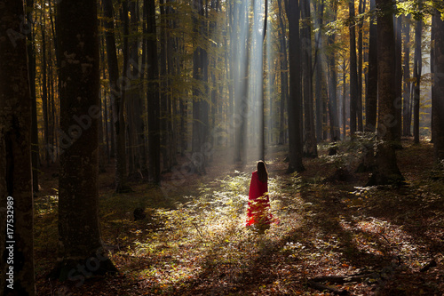 Red Riding Hood portrait in the autumn foggy forest Poster