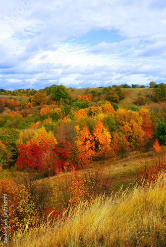 Autumn landscape, beautiful yellow and red trees, road, mountainous area against the cloudy sky. Weather, steppe, grass © Ian 2010
