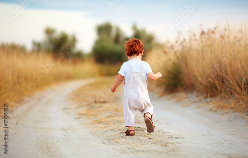 cute toddler baby boy running away along the path at summer field Poster