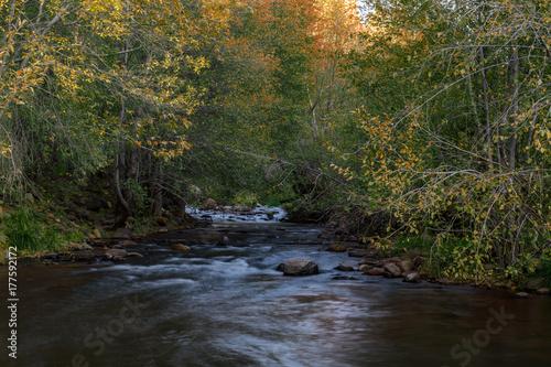 Papiers peints Rivière de la forêt Water flowing