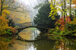 Quadro Scenic view of misty autumn landscape with beautiful old bridge in the garden with red maple foliage.